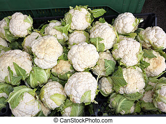 white cauliflowers for sale in greengrocers stall - many...