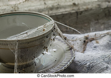 spiderwebs on coffee cup - spiderwebs on an old coffee cup