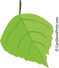 birch tree leaf one - One birch tree leaf on a white...
