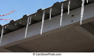 Lot of Melting icicles on a roof - Melting icicles on a roof...