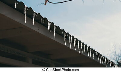 Lot of Melting icicles on a roof