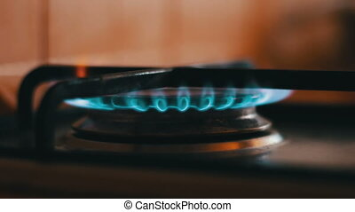Burning blue flames of a gas stove - Natural gas...