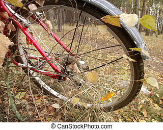 Bicycle on forest path. The rear wheel in the bosom of...