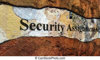 Security assignment agreement