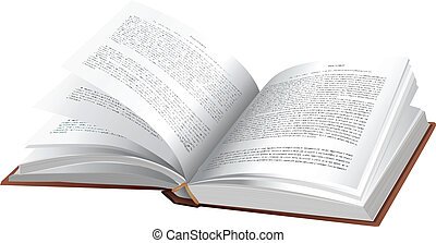 Book - Vector open book on white background