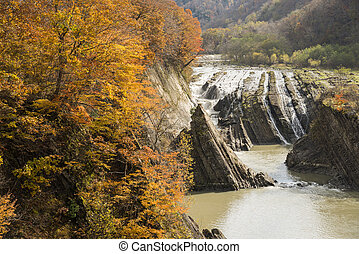 Autumn trees and waterfall - Autumn orange trees in front of...