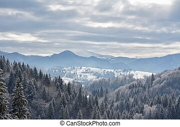 Beautifull winter rural landscape with snow covered trees