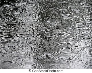 Rain drops Water Texture - Ripples in the water from rain...