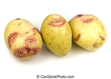 Pink Kiss Potatoes - The shape and color on some areas of...