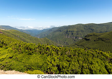 Picturesque aerial panorama of mountains and rainforest...