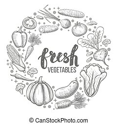 Set of vegetables - Monochrome sketch style set of...