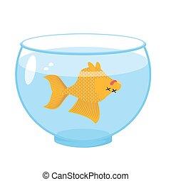 Dead gold fish in aquarium. Sea animal deceased. Corpse of goldfish