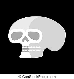 Skull isolated. head of human skeleton. Anatomy illustration