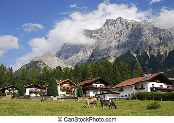 Alpine village of Ehrwald below mount Zugspitze