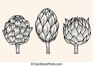 vegetables artichoke on beige background - vector set of...