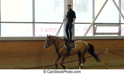 A man riding a brown horse around the arena. Man fulfills...