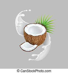 Coconut and milk splash. Natural fruit Realistic vector...