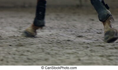 Close up of the horse hooves in motion. Kicking sand.