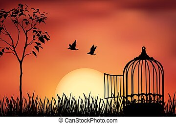 released to sunset - Birds couple escape from a cage,...