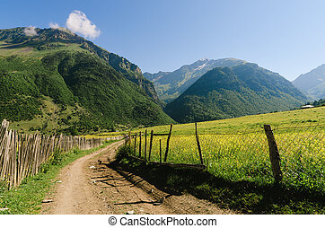 Summer landscape with a road in a mountain village in...