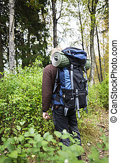 Man With Backpack Hiking In Forest - Rear view of young man...