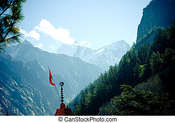 Forest in mountains valley Himalayas