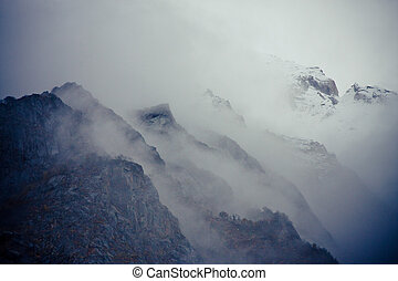 Mist in Forest in mountains valley Himalayas