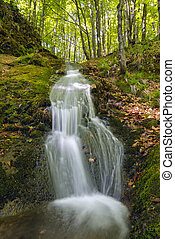 Landscape of the water cascades of a mountain stream. The river flows through mossy rocks surrounded by a beautiful forest.