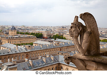 Gargoye of the Notre Dame cathedral - Gargoyle on the Notre...