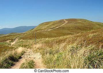 Carpathian landscape - Summer landscape of Bieszczady...