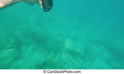 Young man with mask swimming underwater in sea. Male...