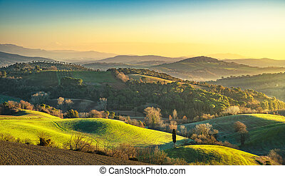 Maremma, rural sunrise landscape. Forest and green field....