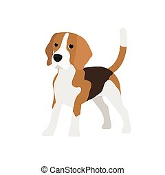 Beagle dog vector