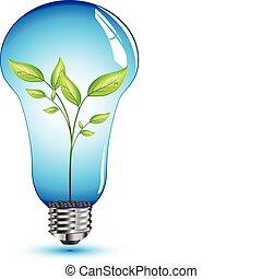 Natural leaf inside light bulb