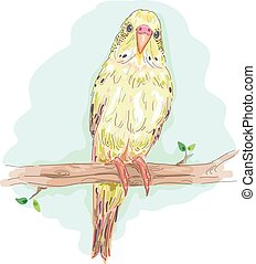Bird Budgie Branch Perch - Animal Illustration of a Colorful...