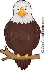 Bird Bald Eagle Branch