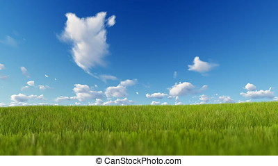 Grass blowing over blue sky, Luma Matte attached