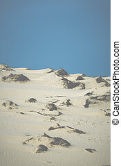 sand dunes in muine- phanthiet province - Vietnam
