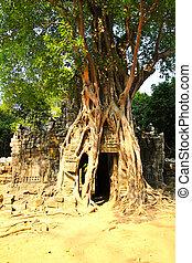 Ta Som temple, Angkor, Cambodia