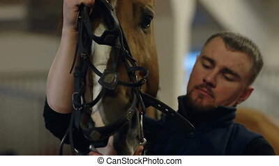 The man put on the horse the bridle. Man putting bridle on...