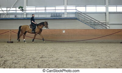 A man riding a brown horse around the arena. . Don horse...