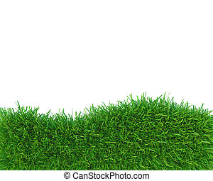 Abstract green grass frame copy space. 3d rendering