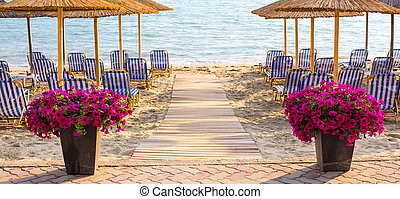 Colorful flowers near wooden path to sea among umbrellas at sandy beach