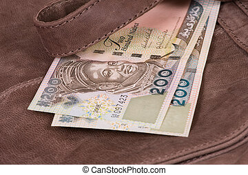 Money on bag - Nigerian money on leather bag