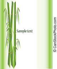 bamboo background - vector illustration bamboo background