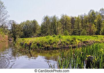 culture landscape of Spreewald forest in Brandenburg...