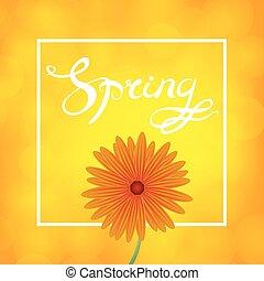 Spring Lettering Design - Spring Lettering Design. Orange...