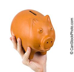 Hand,  2, Schweinchen, Besitz, Mann,  bank