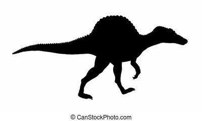 Looping Dinosaur Spinosaurus Walk Animation with Silhouette....