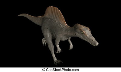 Looping Dinosaur Spinosaurus Walk Animation. Isolated on...